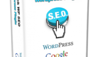 1clickWPSEO