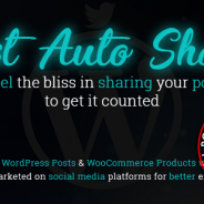 Post Auto Share v1.0.2 Nulled – WordPress Plugin